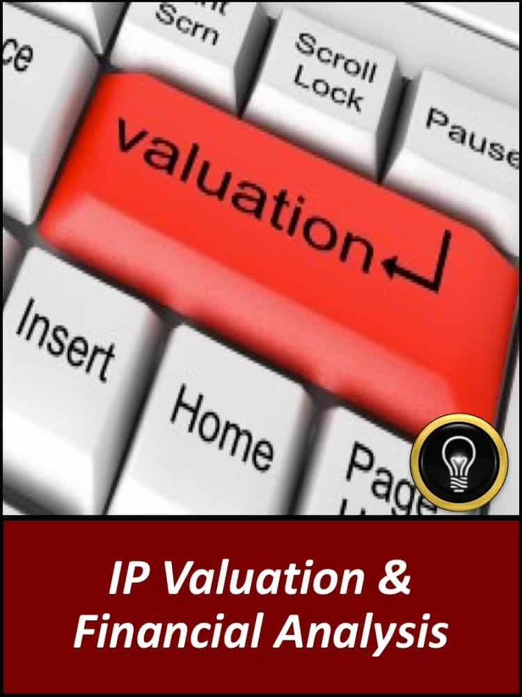 IP Valuation & Financial Analysis
